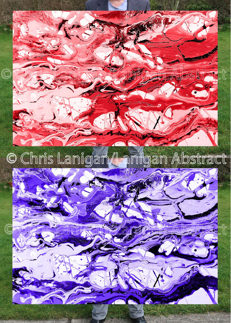 Macro Photography lanigan abstract canvas print. Red or blue filter over black and white shot.